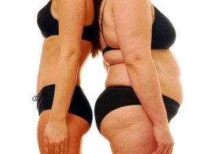 venus factor weight loss program