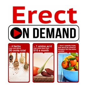 Erect On Demand PDF John Harding