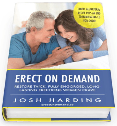 Erect On Demand PDF